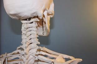 Föreläsning: Låt nacken vara fri med hjälp av Alexanderteknik